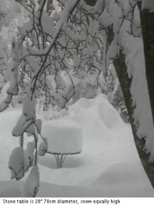 snow in backyard
